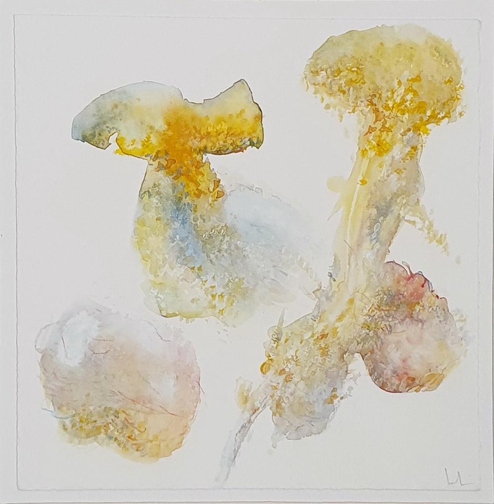 aquarelle-69