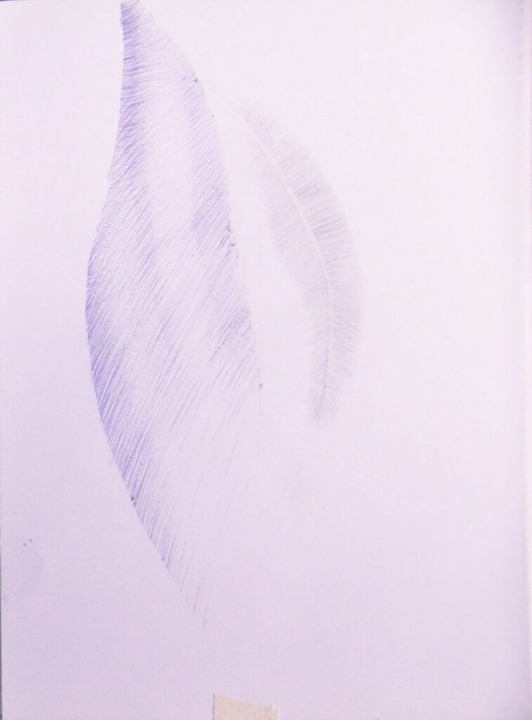 dessin sans dessein 157